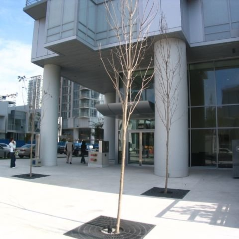 Spectrum 4 Apartments for Rent, 602 Citadel Parade, Vancouver, BC - 11